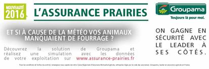 GROUPAMA_encart-prairie-413x138pxls_bdef_1.jpg